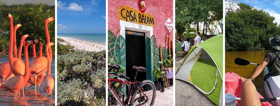 Casa Balam: Hospedaje y experiencias diferentes en la playa de Sisal -  Mariana Baenove